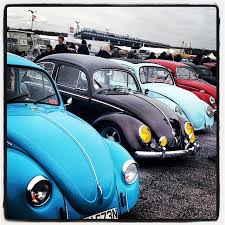 VW Bugs 2 images